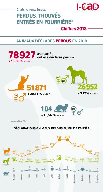 Animaux Perdus Trouves Entres En Fourriere Chiffres 2018